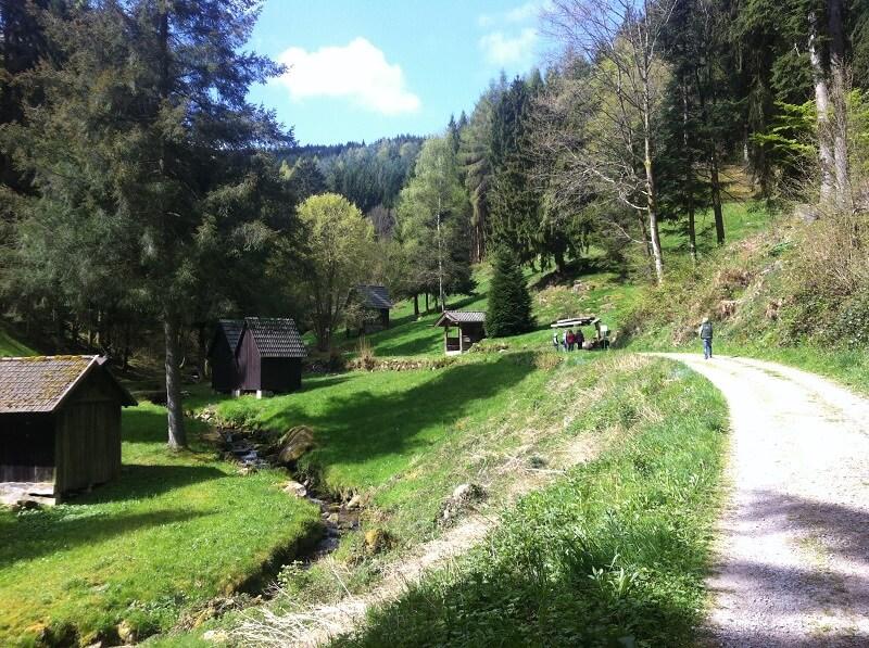 Schwarzwald Kinder beim Wandern