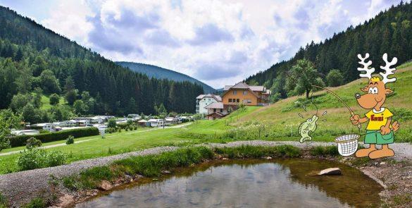 Eindrücke vom Campingplatz   © Campingplatz Kleinenzhof