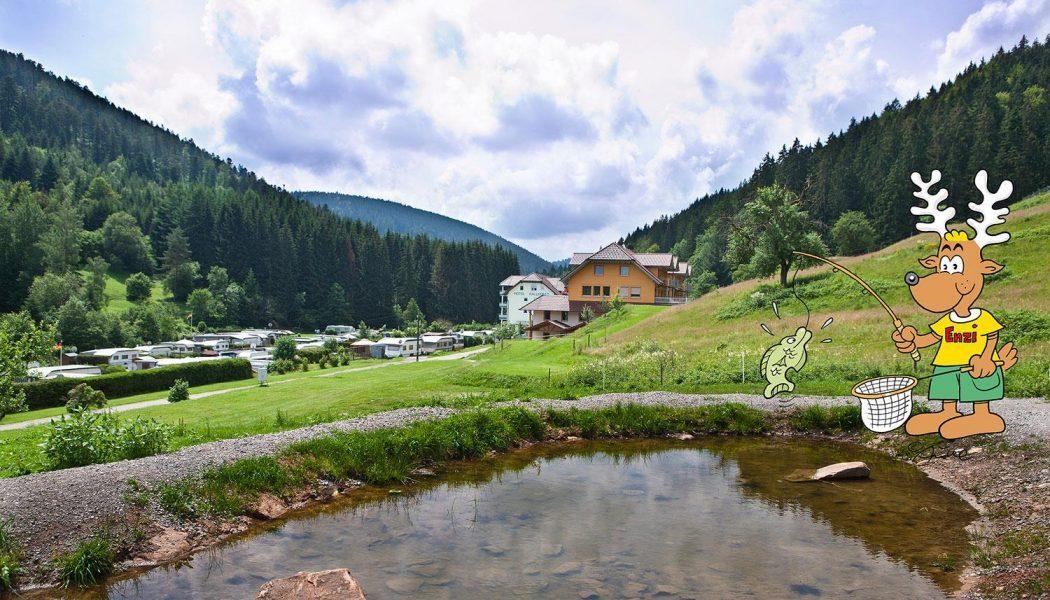 Eindrücke vom Campingplatz | © Campingplatz Kleinenzhof